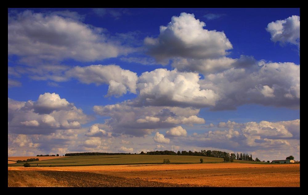 °°° summer sky [3] °°°