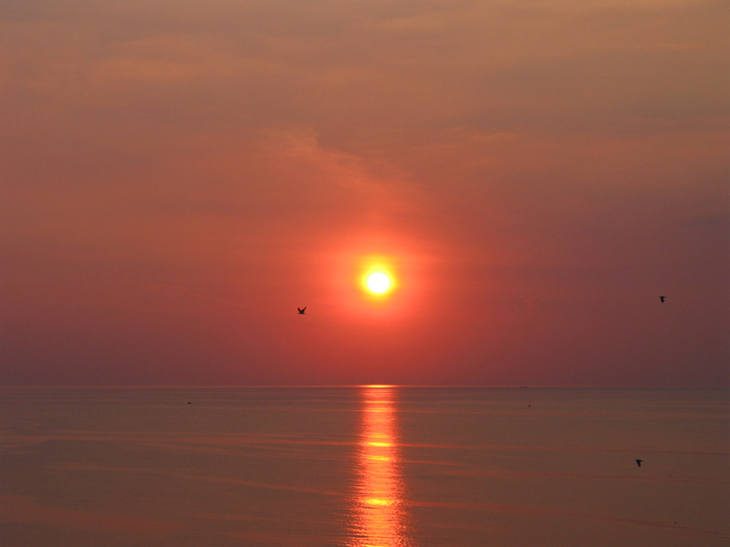 Summer / Sunset - IV