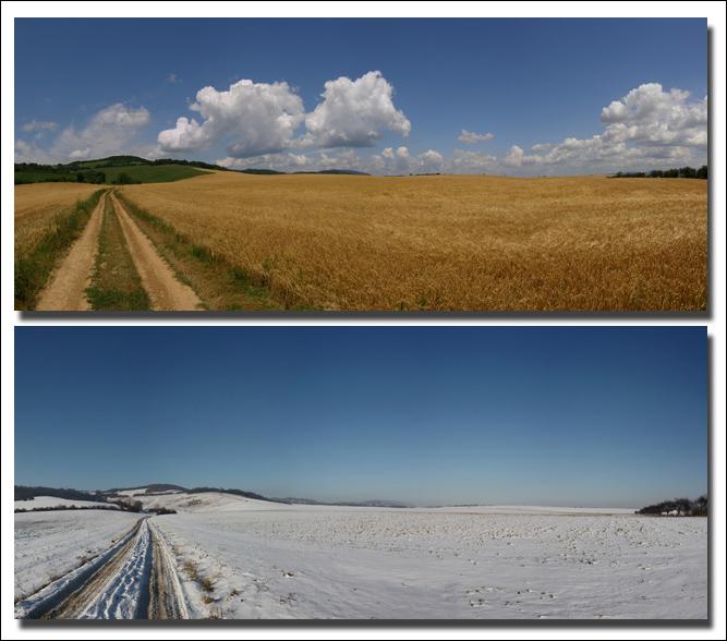 Summer - Winter