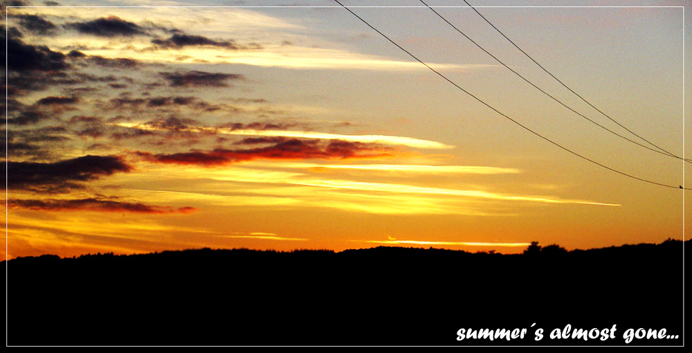 summer´s almost gone...