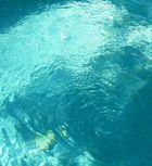 summertime means a pool to landlocked Okies :)