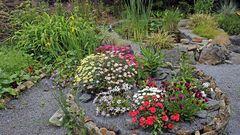 Sumpfbeet,Gartenteich,Hochbeet und ganz links eine Mischung für Insekten...