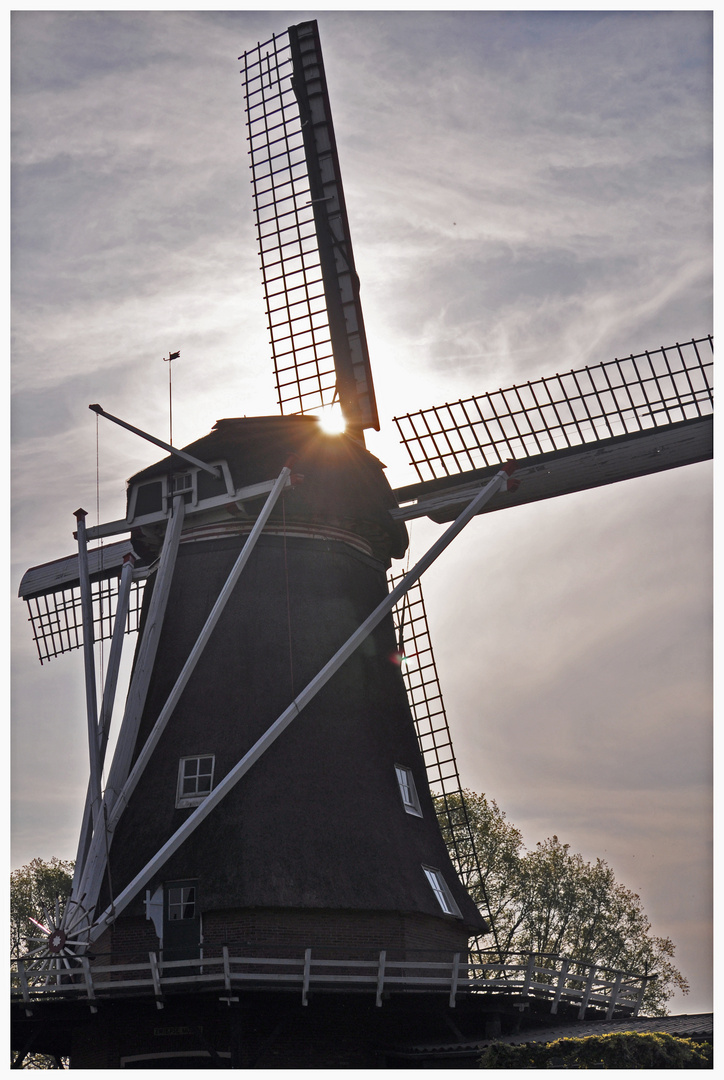 Sun behind the windmill