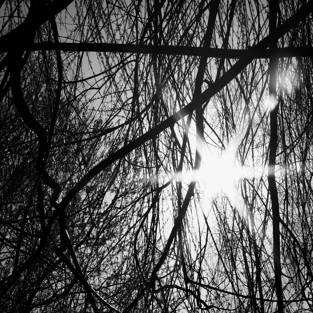 sun framed I