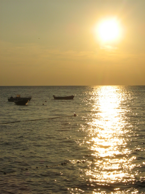 sun, sea, spadici