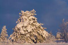 sun, snow and blue sky....