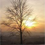 ~ Sundown ~
