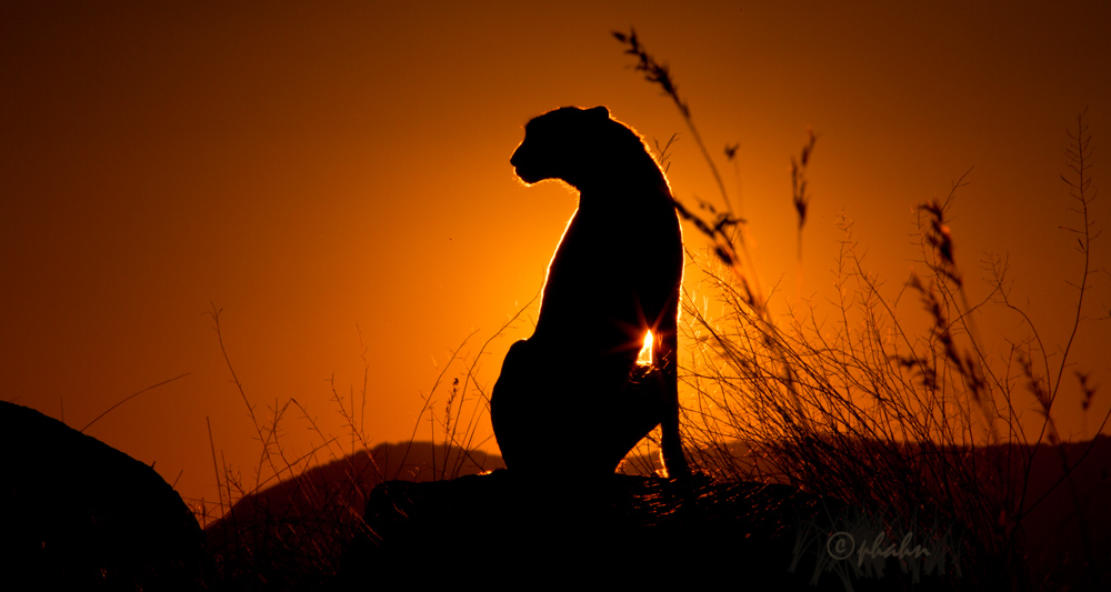 ... Sundown ...