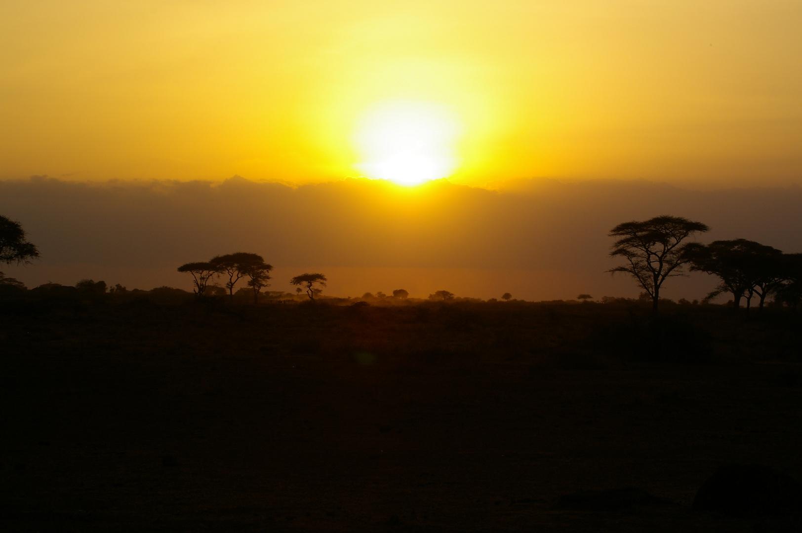 Sundown auf Safari
