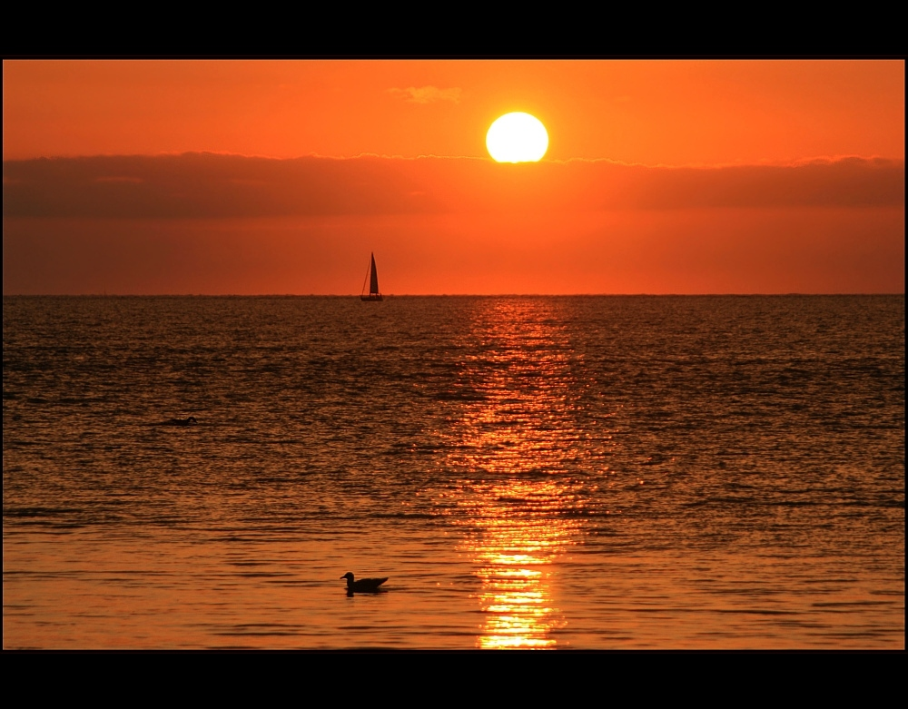 Sundown Dreaming