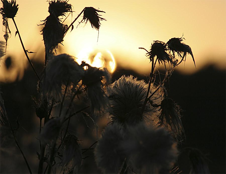 Sundown I