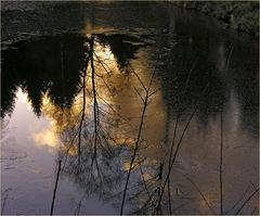 Sundown in the sticks