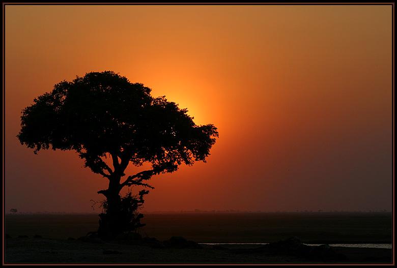 Sundowner-Idylle am Chobe River