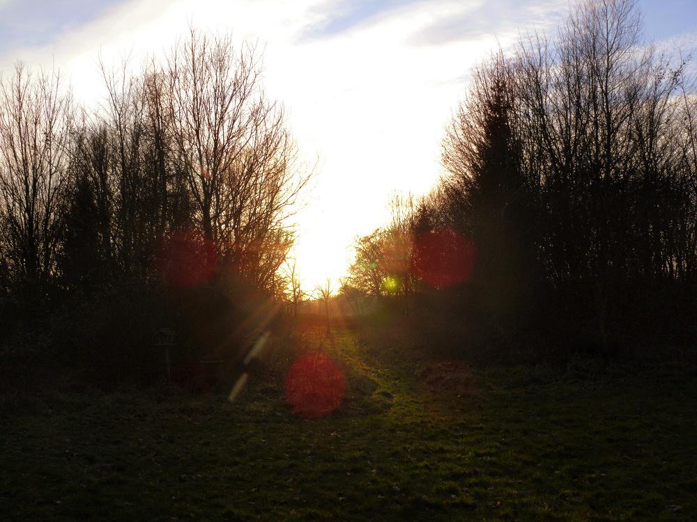 Sunny day in December