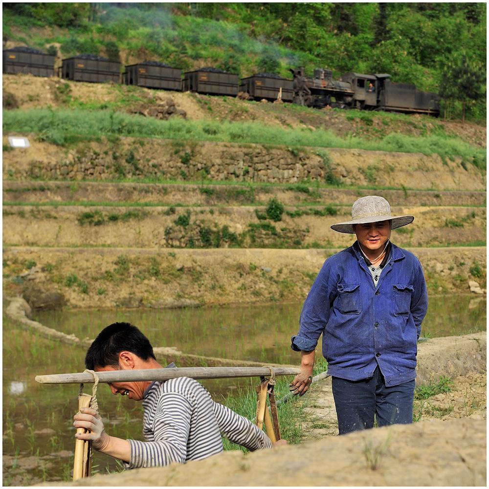 Sunny Shibanxi XXXVI - Feldarbeit I