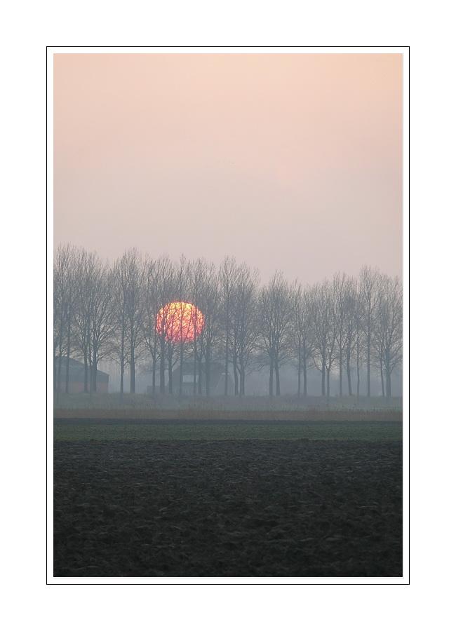 Sunrise 02.01.08 (Zeeuws-Vlaanderen)