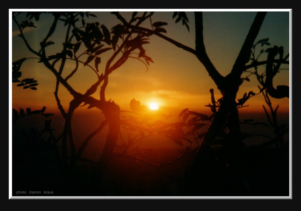 sunrise-4-u
