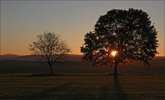 * sunrise *