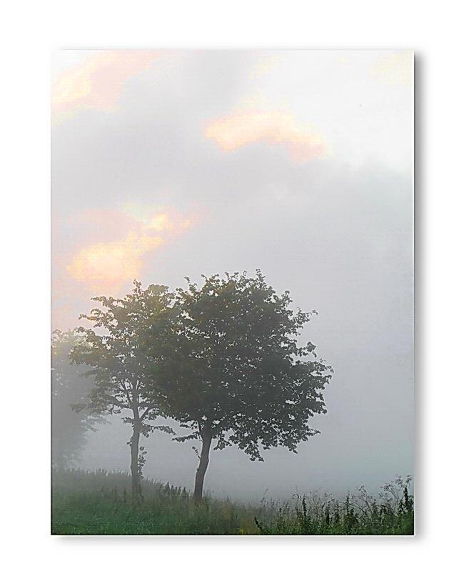 Sunrise 9.8.2012, 6:50 ( #3)