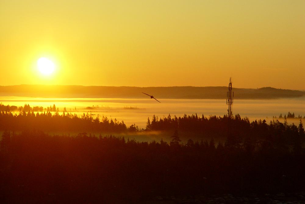Sunrise after solstice