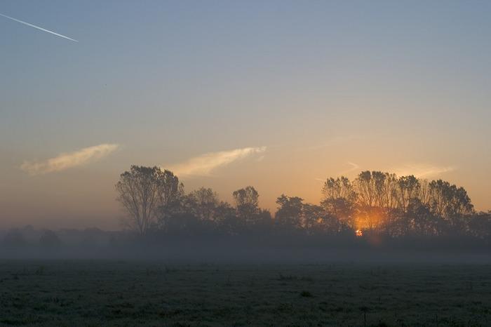 Sunrise and Fog over Meadows III