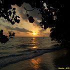 Sunrise at Havelock Island (Andaman & Nicobar Islands - INDIA)