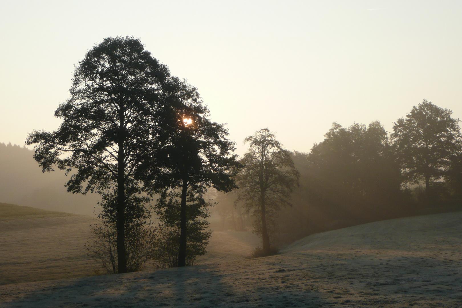 Sunrise at Paradise-Valley