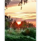 Sunrise (has crossed over the Dijk, and is moving towards it's summer position) 01.05.2008