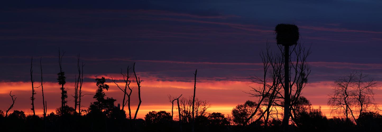 sunrise Ilkerbruch   - Pano -