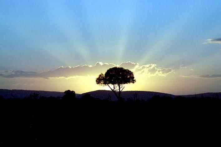 Sunrise in Massai Mara