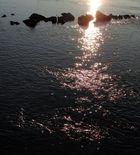 Sunrise - Lichtbeifang