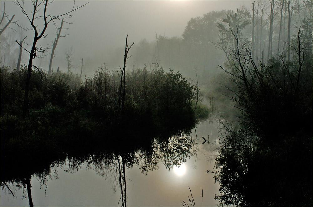 Sunrise On Bear Brook