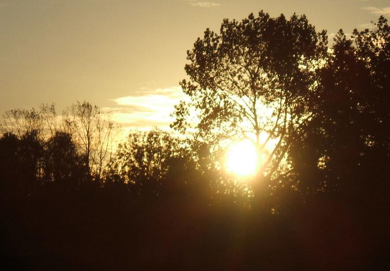 Sunrise over Basildon