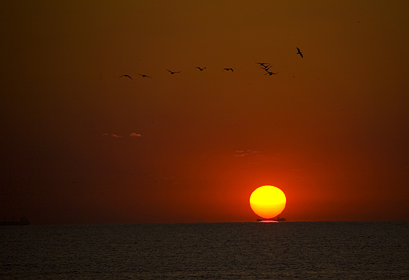 sunrise...each day, in the same place..