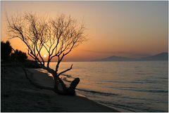 - sunset -