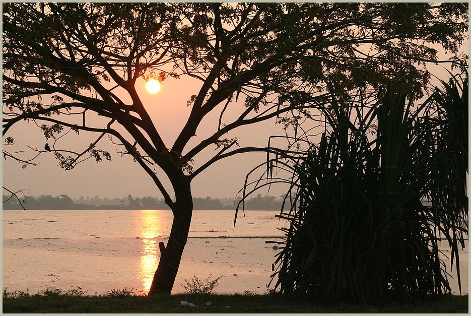 sunset am Kanal ... in Kerala