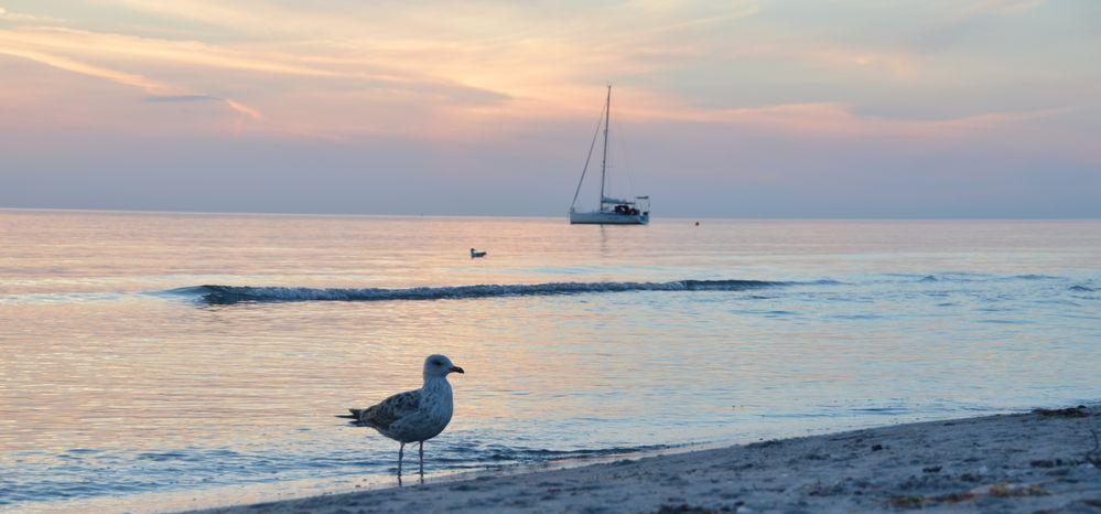 Sunset am Strand Hiddensee