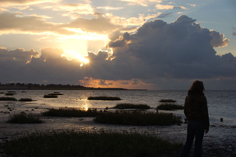 Sunset at the wadden sea