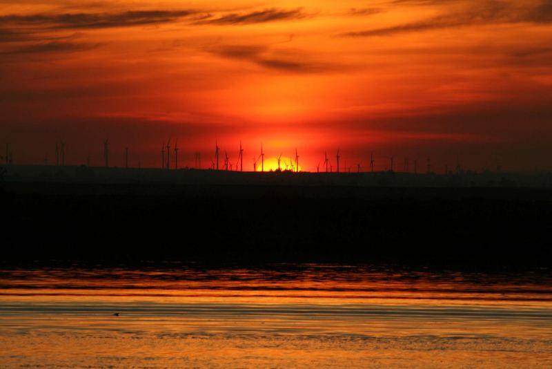Sunset at the Windy Cove, Sacramento Delta, California.