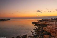 - Sunset Cyprus -