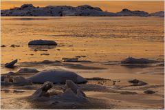 Sunset Ice