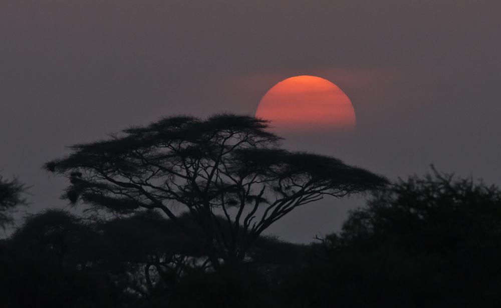Sunset im Amboseli NP