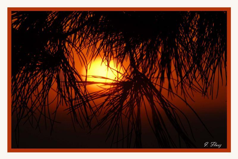 SUNSET IN AZMIR