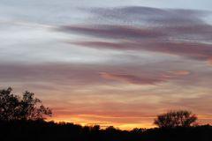 Sunset in Dessau - image 3