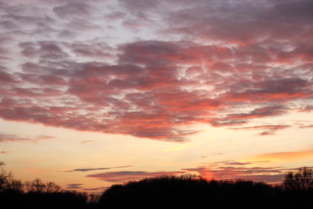 Sunset in Dessau - image 7