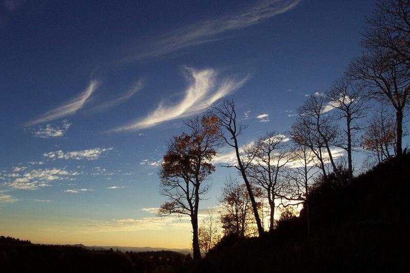 sunset in Flagstaff / Arizona