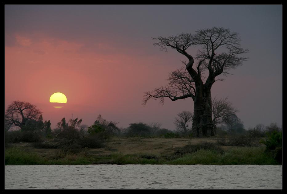 Sunset in Liwonde National Park