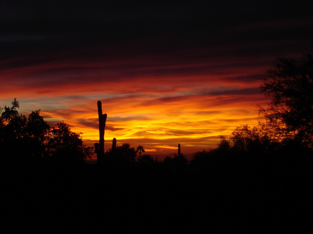 sunset in scottsdale,phoenix,arizona