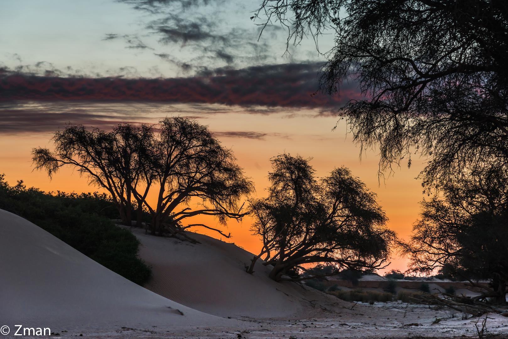 Sunset in The Namibian Desert 04