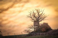 Sunset-Kasseler Heide